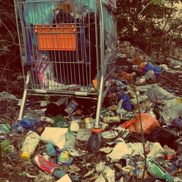 Новый штраф - за мусор на дороге.